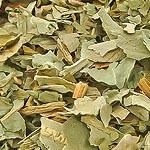 Vachta list (Folium trifolii fibrini)