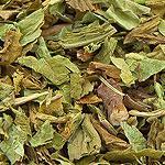 Pampeliška kořen s natí  (Radix taraxaci cum herba)