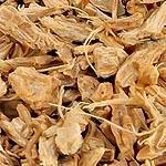 Pupava kořen (Radix carlinae)