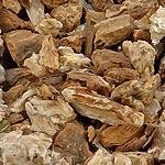 Lopuch kořen (Radix bardanae)
