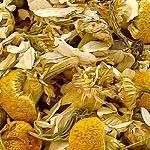Heřmánek květ (Flos chamomillae)