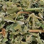 Maliník list (Folium rubi idaei)