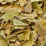Ořešák list (Folium juglandis)
