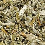 Mochna nať (Herba anserinae)