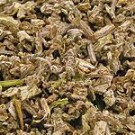 Šalvěj nať (Herba salviae)