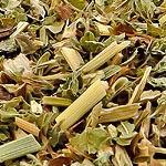 Meduňka nať (Herba melissae)