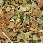 Plicník list (Folium pulmonariae)