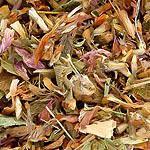 Jetel rolní květ (Trifolium pratense)